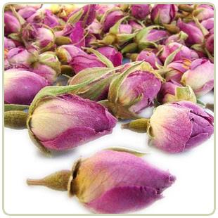 иранская роза фото